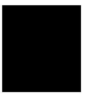 PERSONAL TRAINING M's GYM 3の特徴