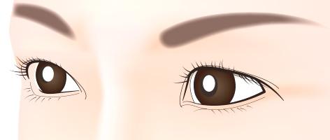 従来式:マシーンのみの眉のアートメイク