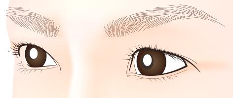 3D:手彫りの眉のアートメイク