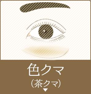 色クマ(茶クマ)
