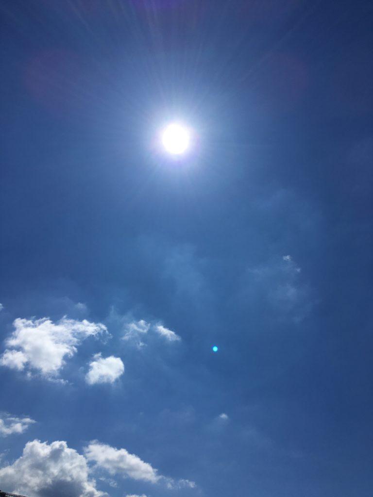 今年の夏は暑い日が続きます!