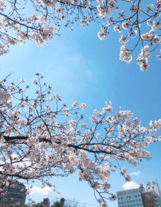 \動き始めた春/